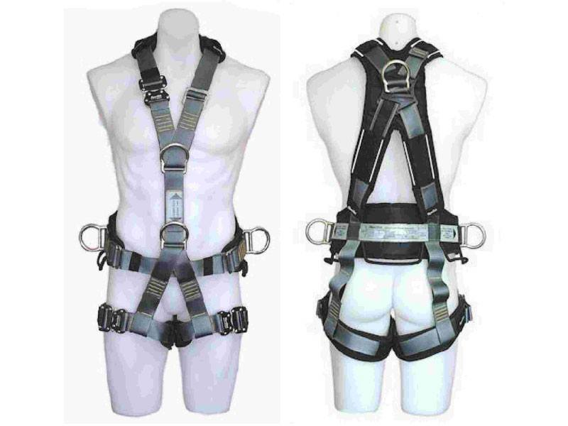 Ergo Plus Harness 1800